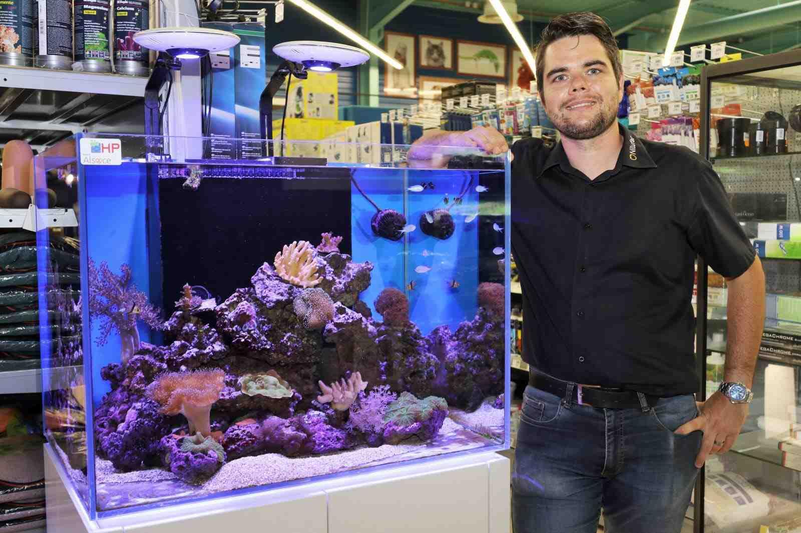 Quel poisson pour un nano aquarium?