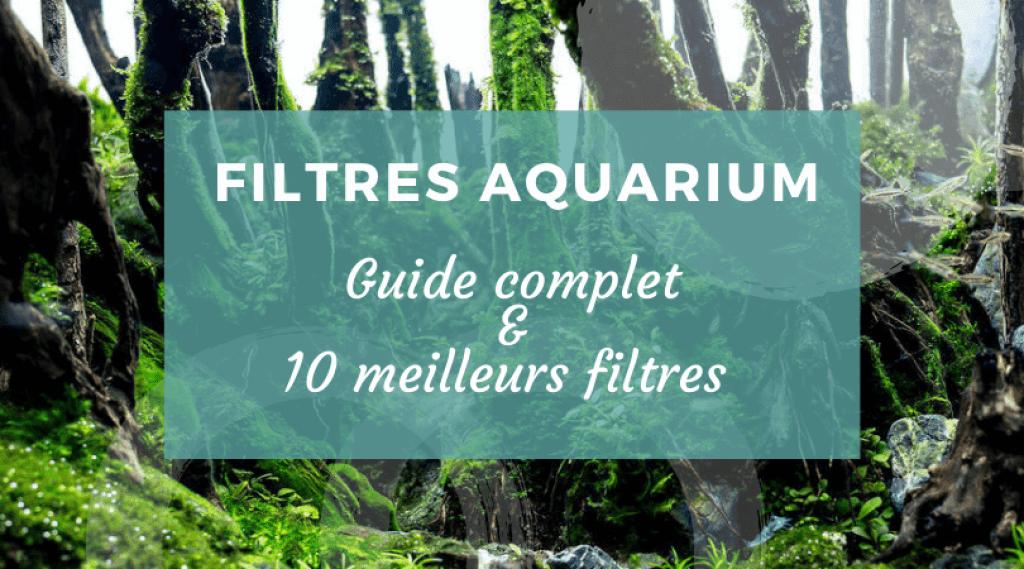 Quelle pompe pour un aquarium de 300 litres?