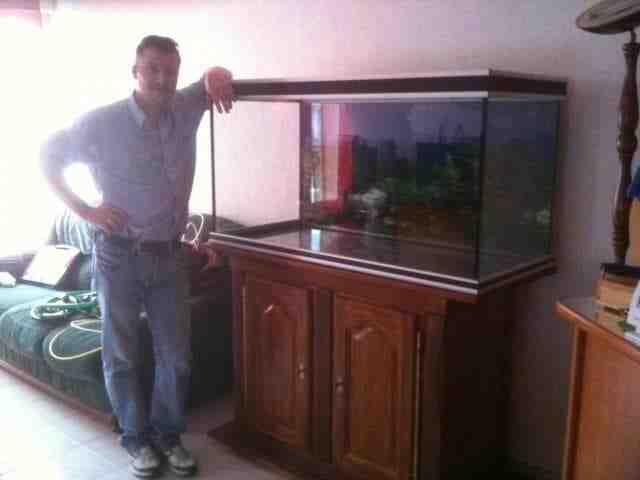 Comment mettre la racine au fond de mon aquarium?