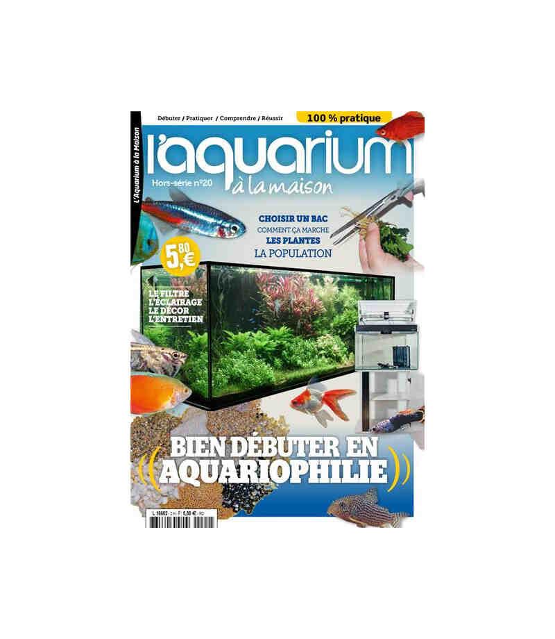 Comment bien gérer son aquarium?