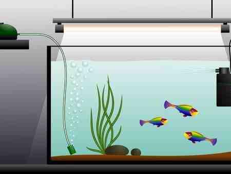 Comment fabriquez-vous un filtre d'aquarium?