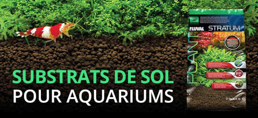 Comment faire un substrat d'aquarium ?