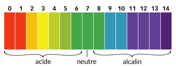 Comment le pH de l'eau dans un aquarium est-il calculé?