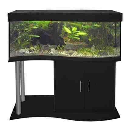 Quel prix pour un aquarium?