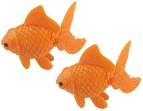 Combien d'eau pour 2 poissons d'or?
