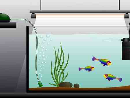 Comment choisir une pompe à eau d'aquarium?