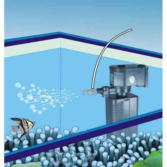 Comment installer une pompe dans un aquarium?