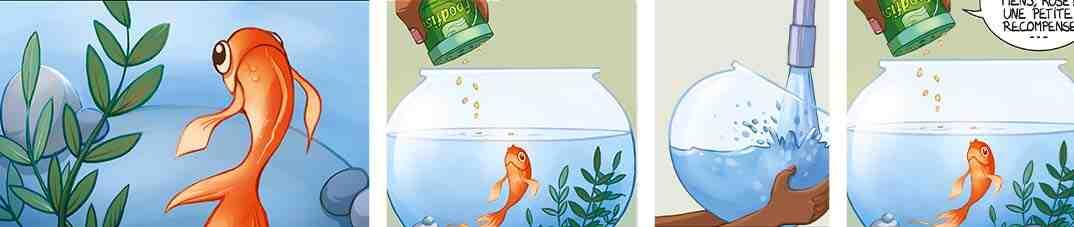 Pourquoi les poissons rouges meurent-ils si vite?