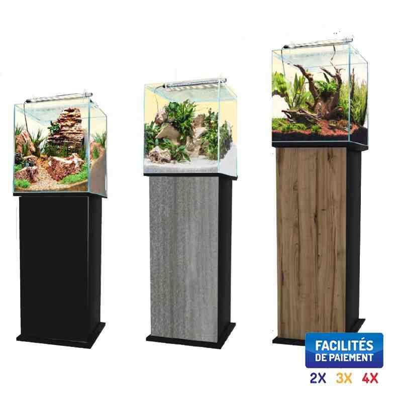Quel poisson pour un aquarium de 54 litres?