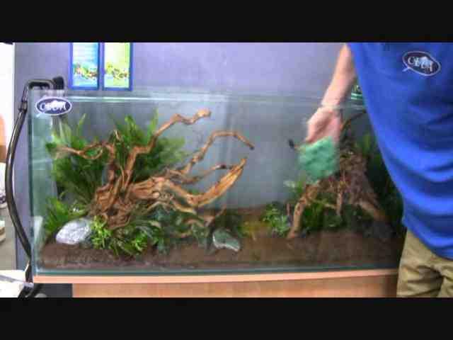 Quel produit mettez-vous pour démarrer un aquarium?