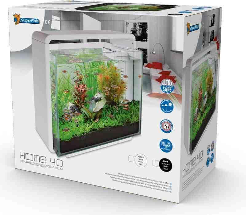 Quels poissons pour un aquarium de 40 litres ?